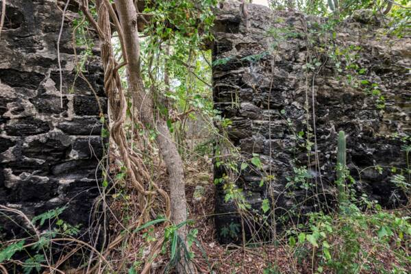 ruins of a stone house from Belleview Plantation on North Caicos in the Turks and Caicos