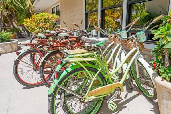 beach cruiser bicycles at Bohio Dive Resort