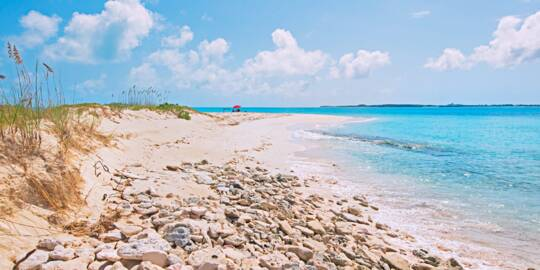 sea oats and beach at Gibbs Cay