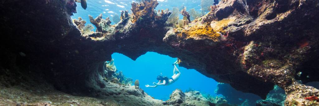 Coral arch and snorkeler in the Turks and Caicos