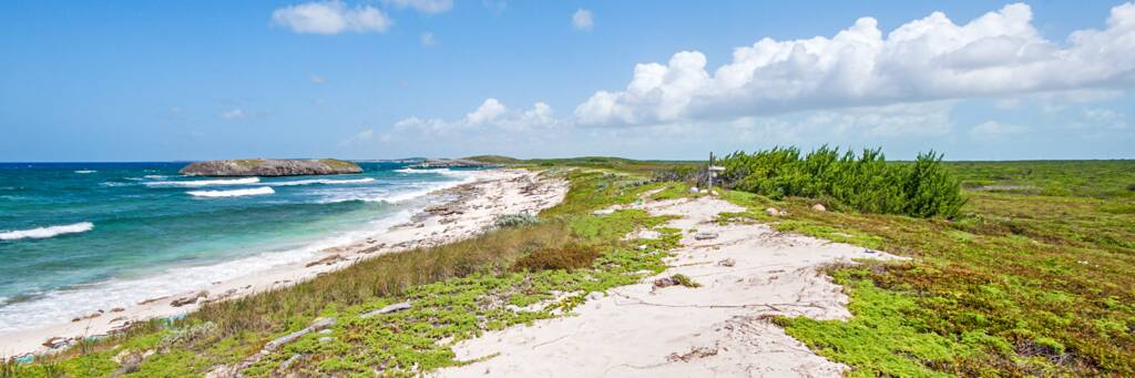 the coastal Crossing Place Trail near Norbellis Coves on Middle Caicos