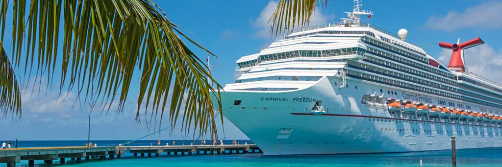 coconut palm fronds and cruise ship at Grand Turk