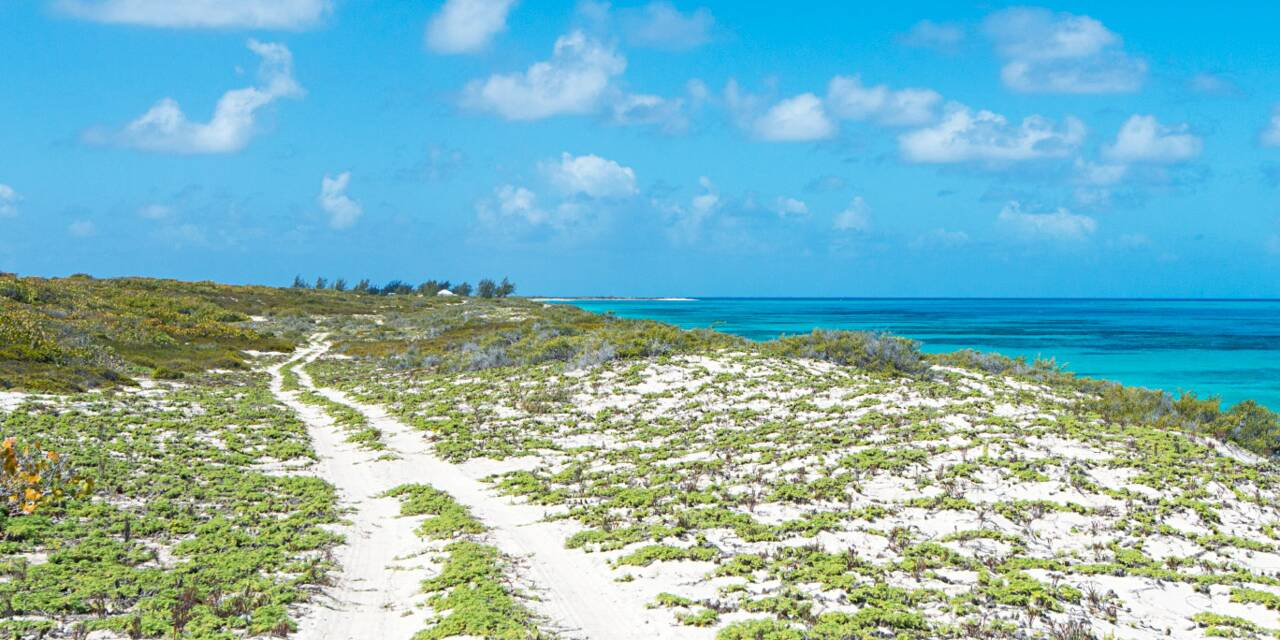 Rental Cars In Turks And Caicos Island
