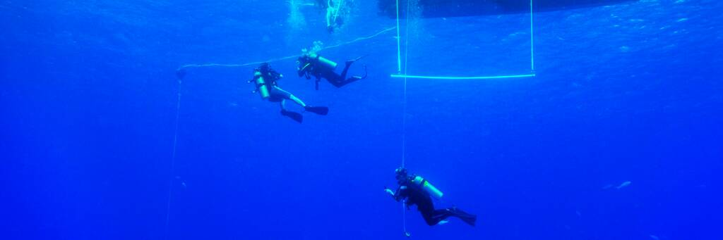 scuba divers waiting out the safety stop in the Turks and Caicos