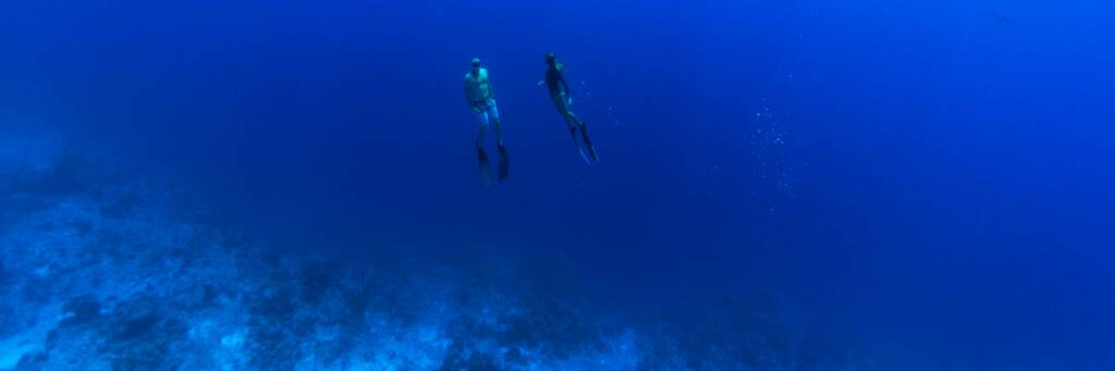 freediving in the Turks and Caicos