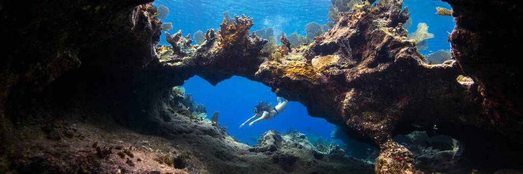 coral arch and formations with snorkeler in the Princess Alexandra National Park