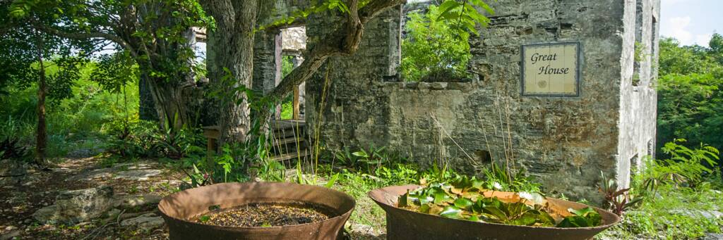 cast iron boiling pots outside the ruins of the Great House at Wade's Green Plantation