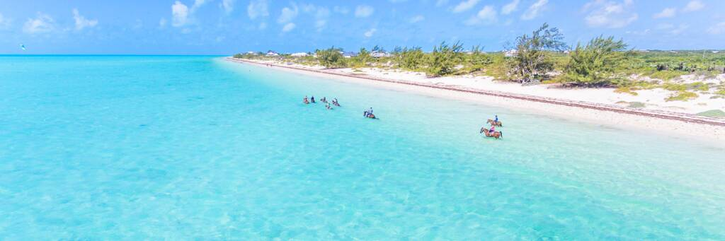 horses and riders wading in the ocean at Long Bay Beach in the Turks and Caicos