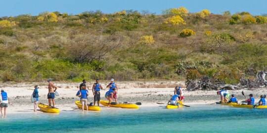 kayak tour group on the beach in North Creek on Grand Turk