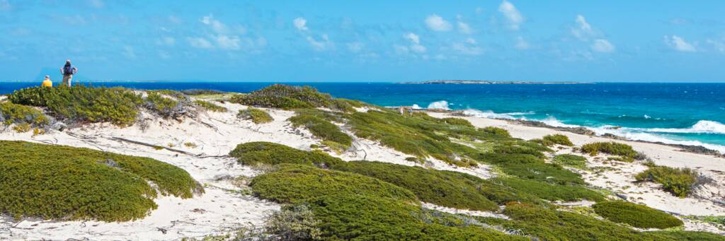 hiking at the dunes and coastal vegetation of Northeast Point on Salt Cay