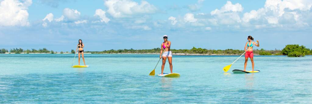 paddle boarders at Mangrove Cay