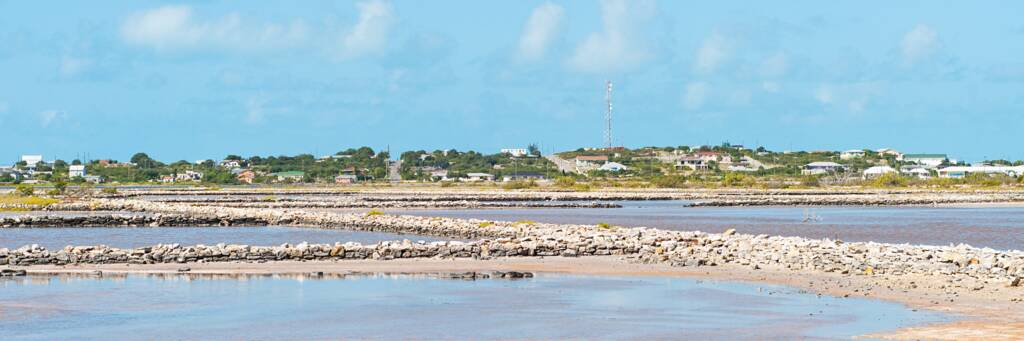 dividing walls and salt pans in the South Caicos salinas