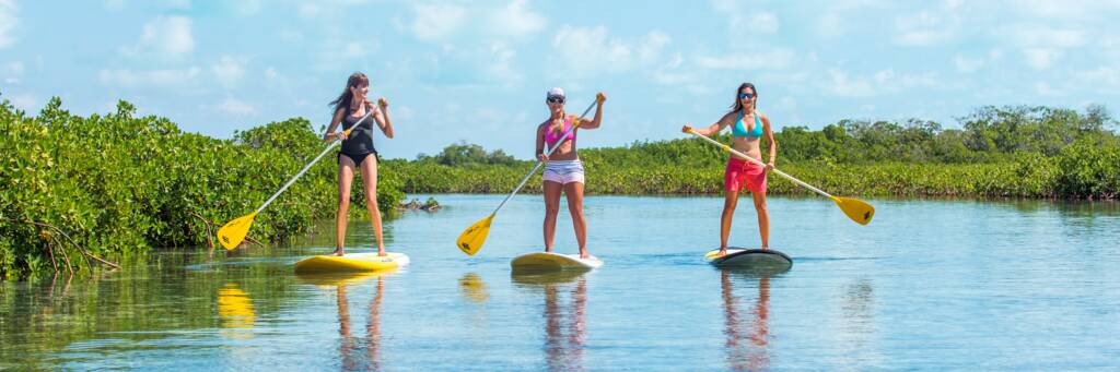 three people stand up paddle boarding in the channel in Mangrove Cay
