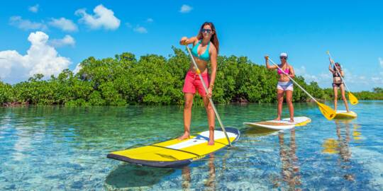 stand up paddle boarding in the red mangroves of the Turks and Caicos