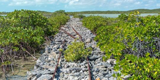 the rock causeway and small-scale railway in the wetlands of East Caicos