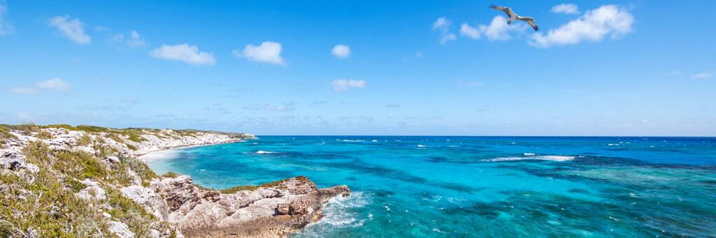 cliffs, reef and an osprey at Highlands Point on South Caicos