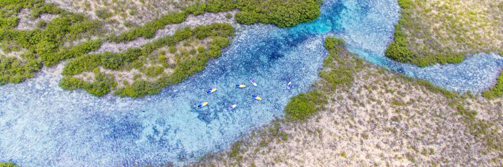 aerial view of paddle boarders in the estuary at Mangrove Cay