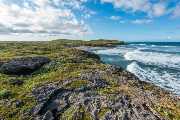 the rugged marine limestone coastline and cliffs of the Crossing Place Trail on Middle Caicos
