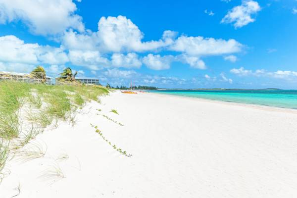 white sand and sea oats at East Bay Beach on South Caicos