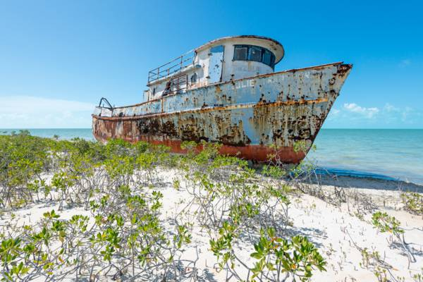 small steel transport shipwreck in the red mangroves of North Caicos
