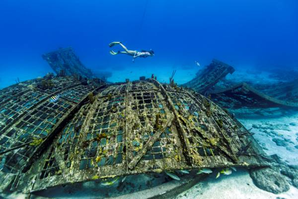freediver and the collapsed Thunderdome at Malcolm's Road Beach