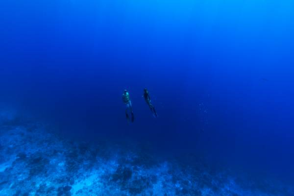 freediving at the wall on Providenciales