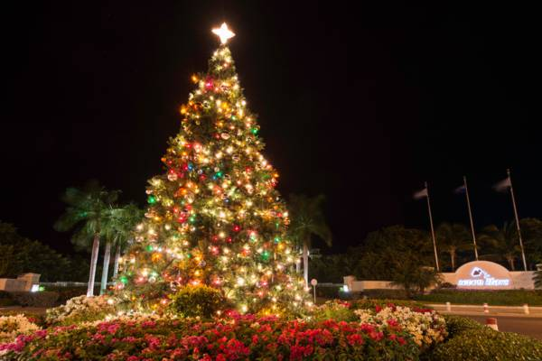giant Christmas Tree at the Seven Stars Roundabout in Grace Bay