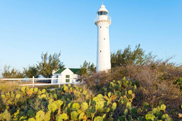 prickly pear cactus and the Grand Turk Lighthouse