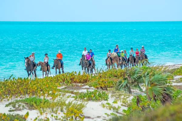 horseback riding tour at Long Bay Beach on Providenciales