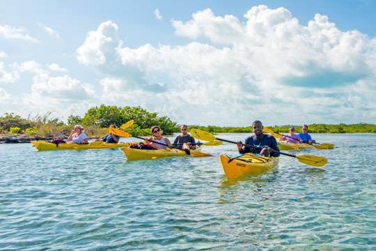 Big Blue Unlimited kayak tour in the wetlands of Mangrove Cay in the Turks and Caicos
