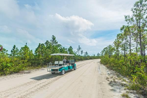 golf car on Pine Cay