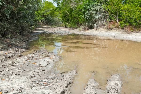 mud hole and driving hazard on a back road in North Caicos