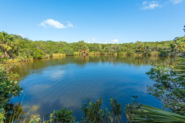 the wild Nanny Pond blue hole at the remote Haulover Fields of Middle Caicos