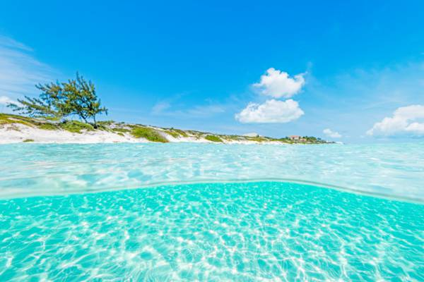 over-under photo of the clear ocean water at Long Bay Beach in the Turks and Caicos