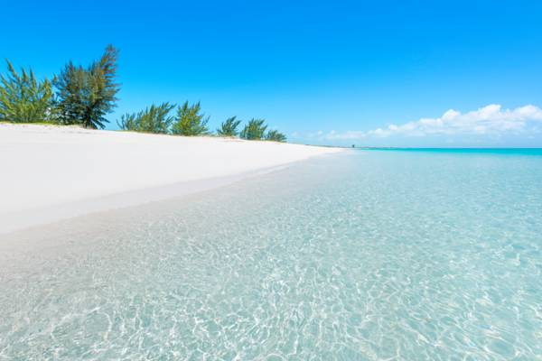 the secluded Pine Cay beach in the Turks and Caicos