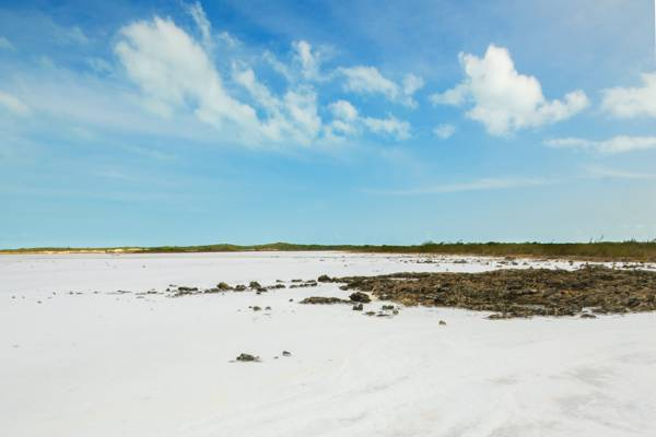 sea salt flat in the Frenchman's Creek and Pigeon Pond Nature Reserve in the Turks and Caicos