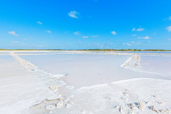 natural sea salt at Hawkes Nest Salina in the Turks and Caicos