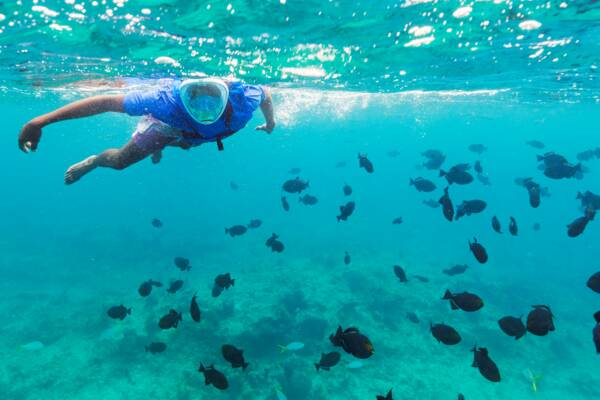 snorkeler with full face mask at the barrier reef near Providenciales