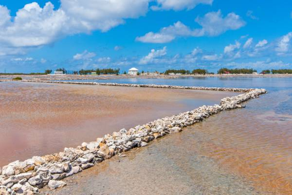 the walls and brine at Town Salina on Salt Cay