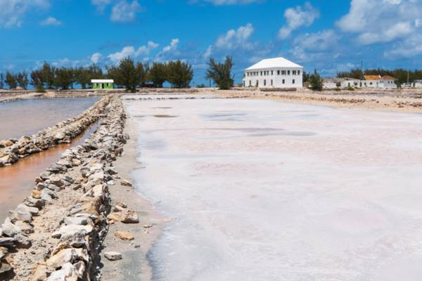 sea salt in the salinas at Salt Cay in the Turks and Caicos
