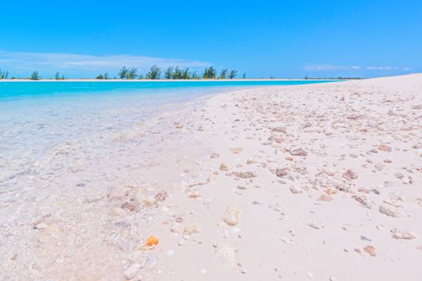 beach at Dellis Cay, Turks and Caicos