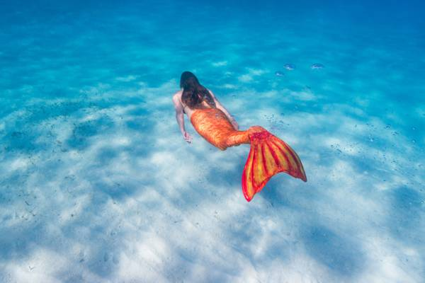 mermaid in the clear waters of Grace Bay