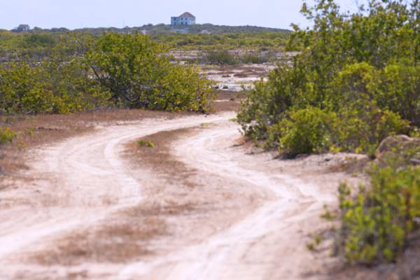 the salina road to the Highlands on South Caicos