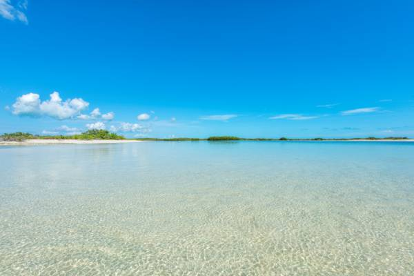 shallows in the Frenchman's Creek and Pigeon Pond Nature Reserve on Providenciales