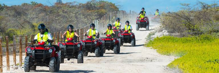 ATV tour group in the wetlands of North Creek on Grand Turk