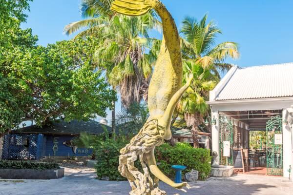Baci Ristorante in Turks and Caicos