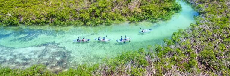 clear kayak eco-tour, at the Frenchman's Creek Nature Reserve in the Turks and Caicos
