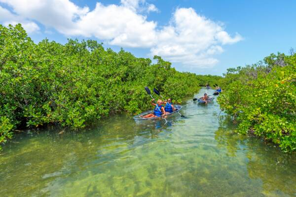 clear kayaks in Turks and Caicos