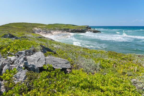 the coastline at the Crossing Place Trail on Middle Caicos