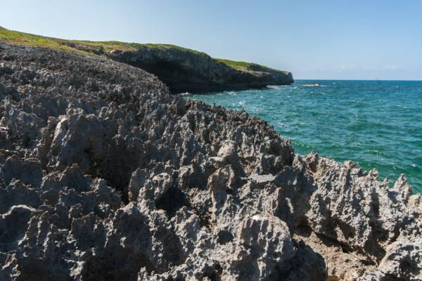 limestone ironshore coastline at the Crossing Place Trail